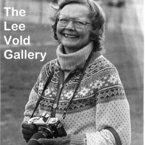 Lee Vold Gallery Link